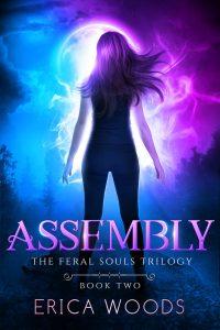 Assembly - A reverse harem shifter romance